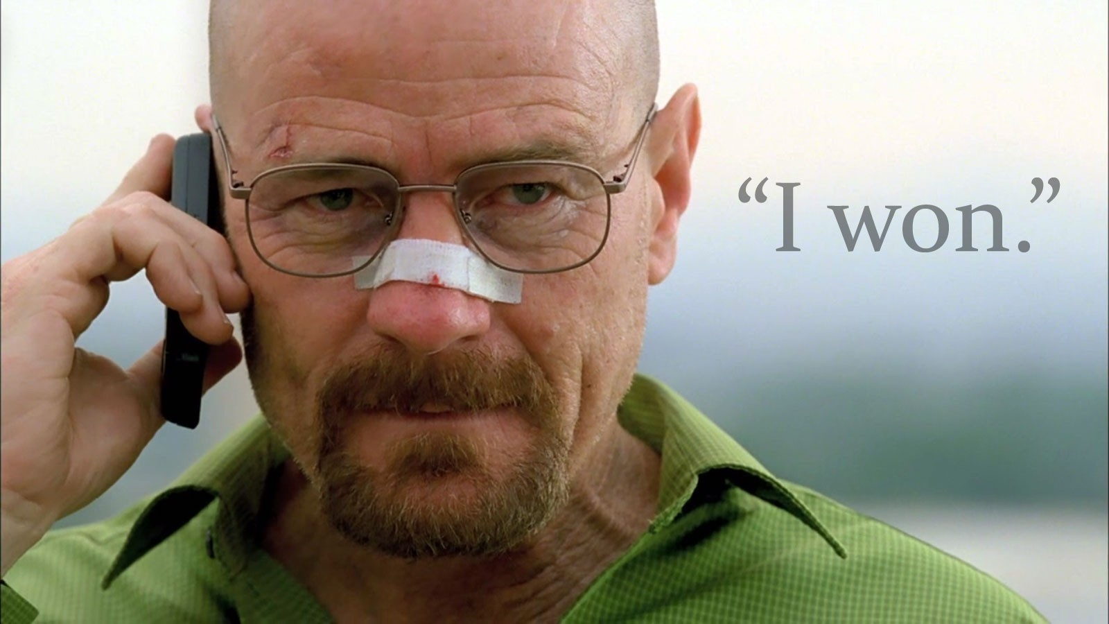 TV Breaking Bad bryan