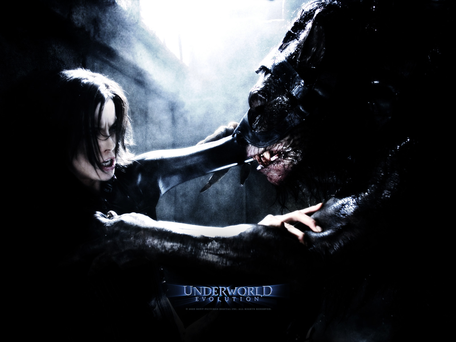 underworld Evolution Vampires wolverines HD Wallpaper