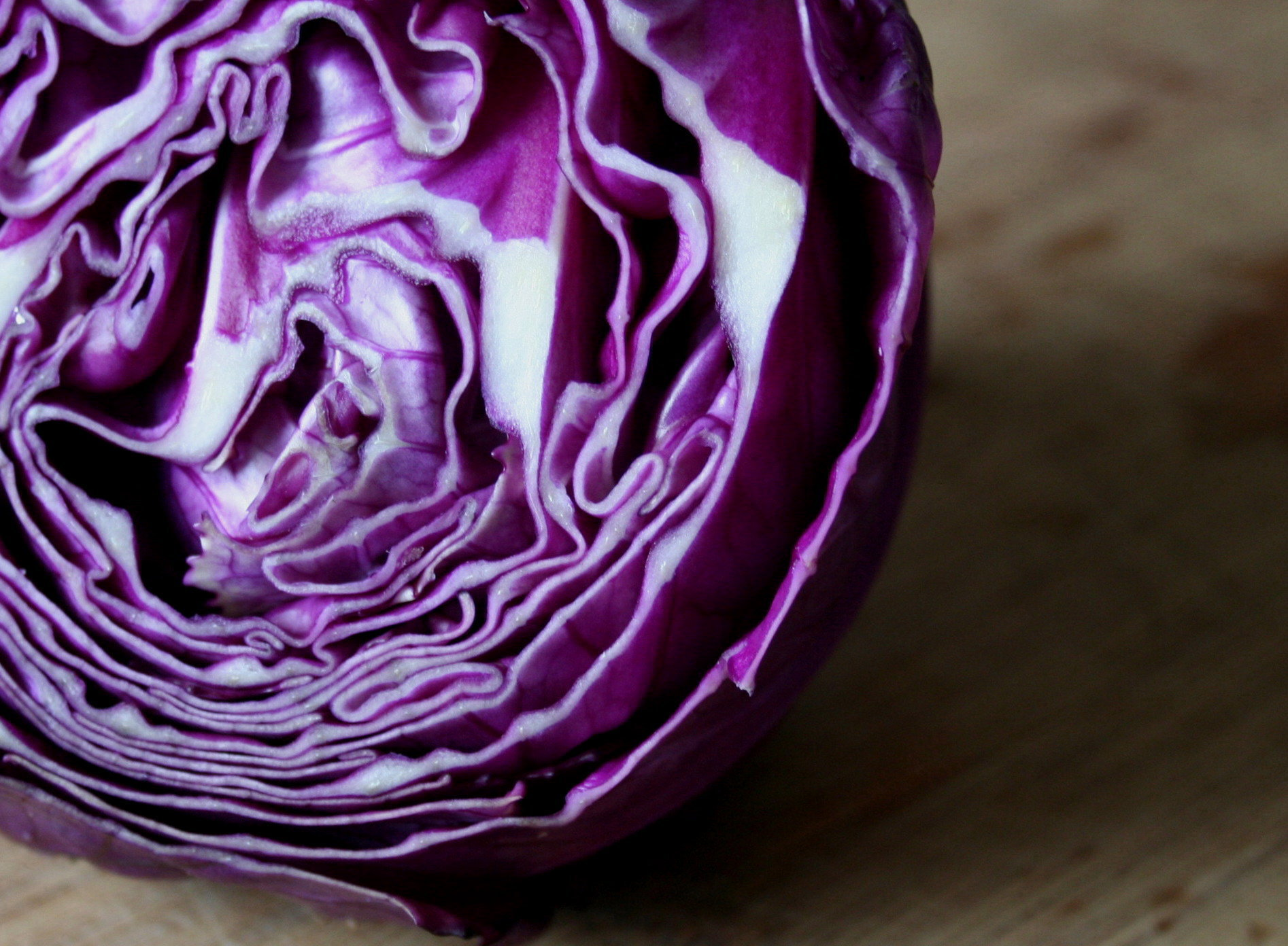 vegetables purple cabbages HD Wallpaper