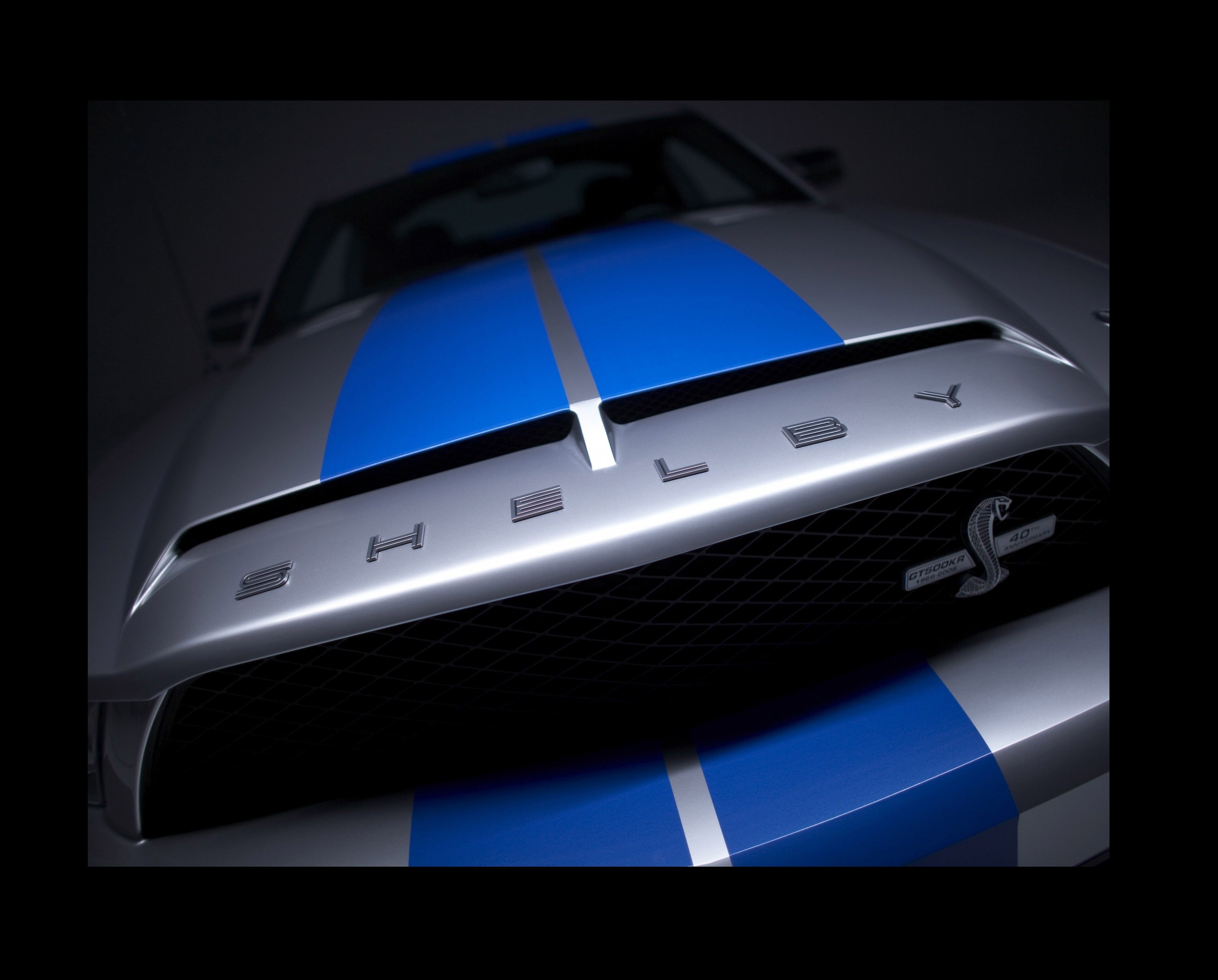 vehicles Ford mustang Shelby HD Wallpaper