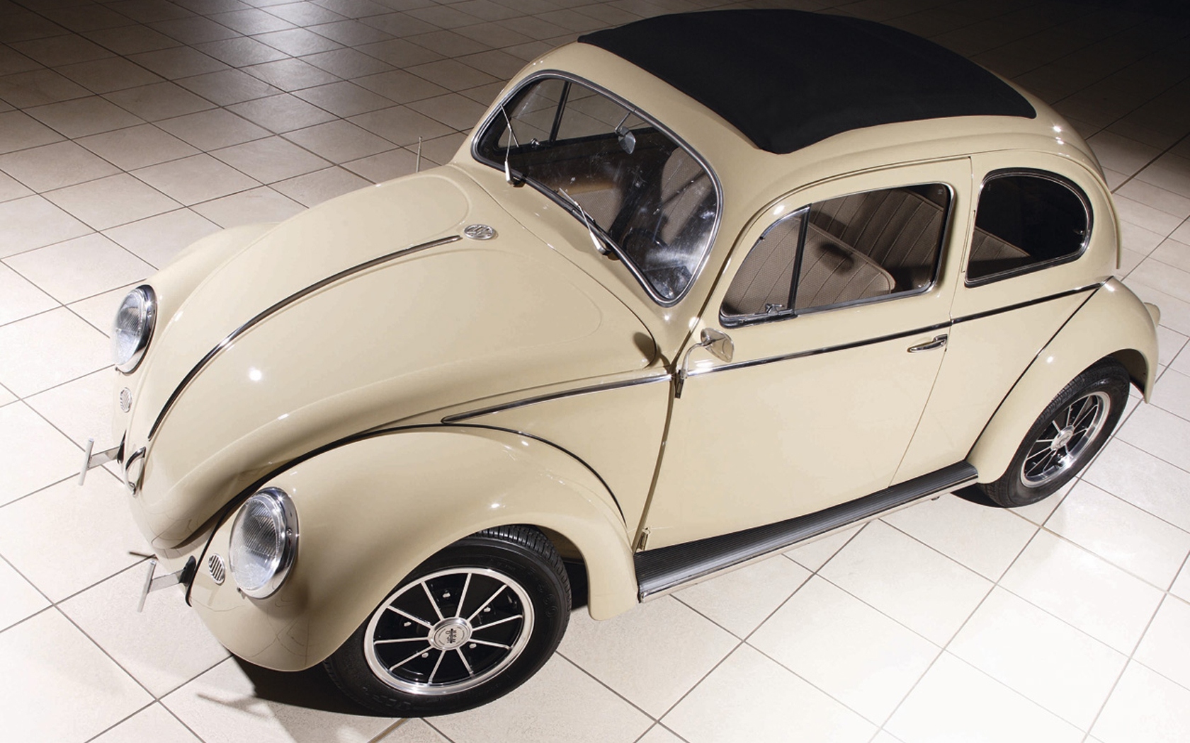 Volkswagen beetle insect HD Wallpaper