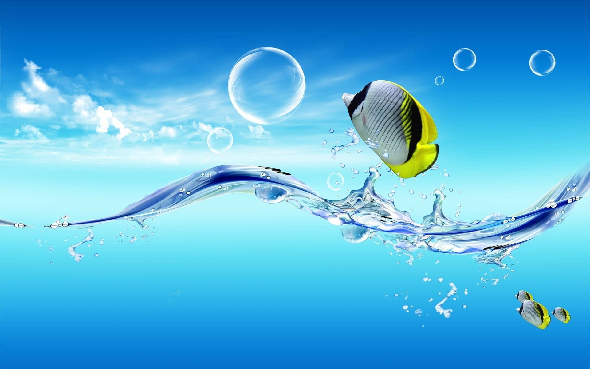 water fish dreamy HD Wallpaper
