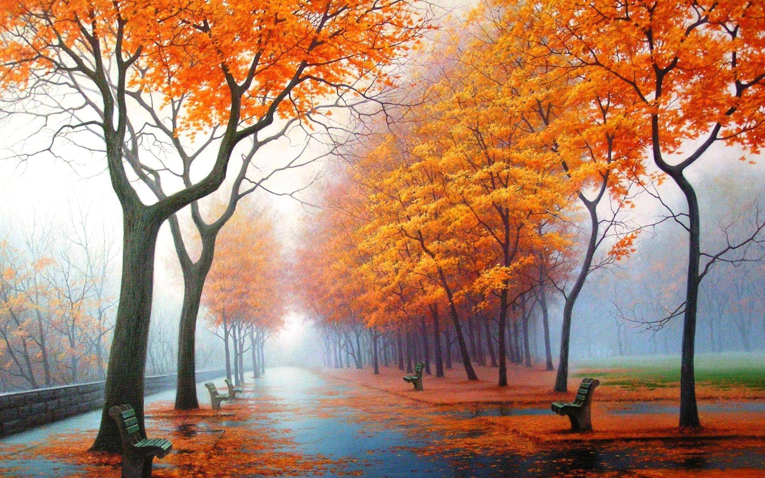 water Landscapes Trees autumn HD Wallpaper