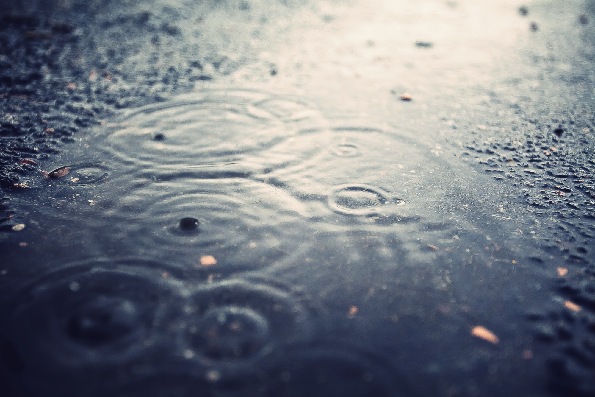 water rain ripples water HD Wallpaper
