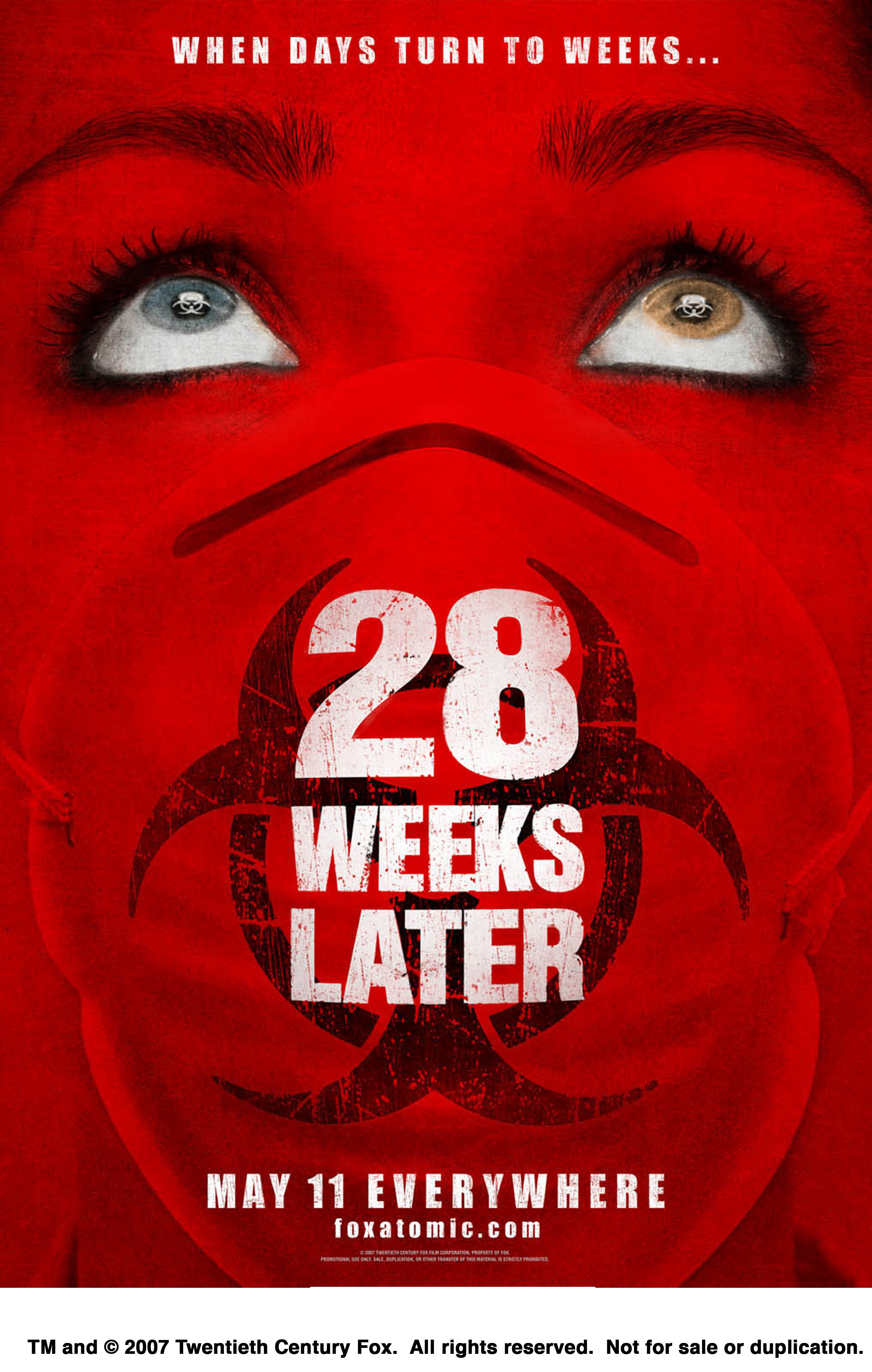 weeks later Movie posters HD Wallpaper