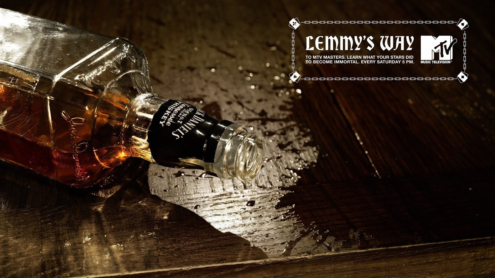 whiskey motorhead mtv Lemmy HD Wallpaper