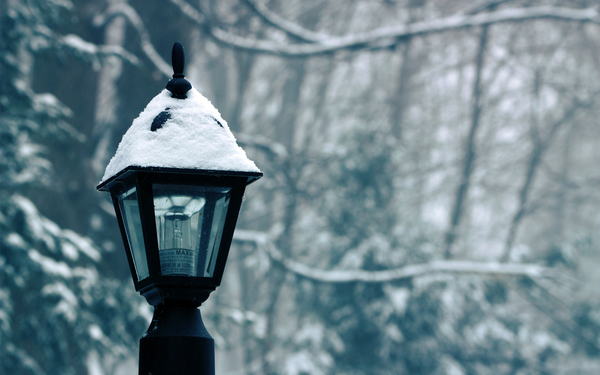 winter snow lamp posts HD Wallpaper