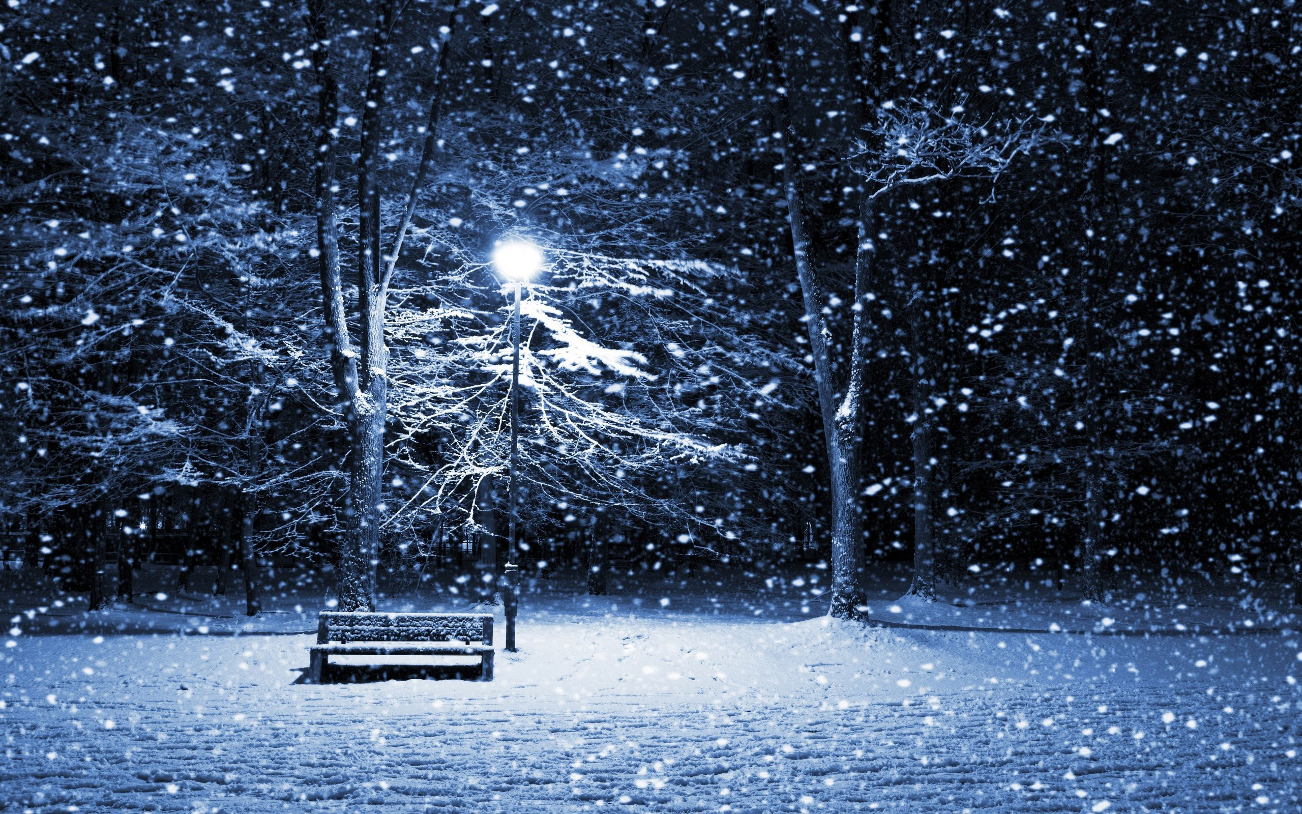 winter snow night bench HD Wallpaper