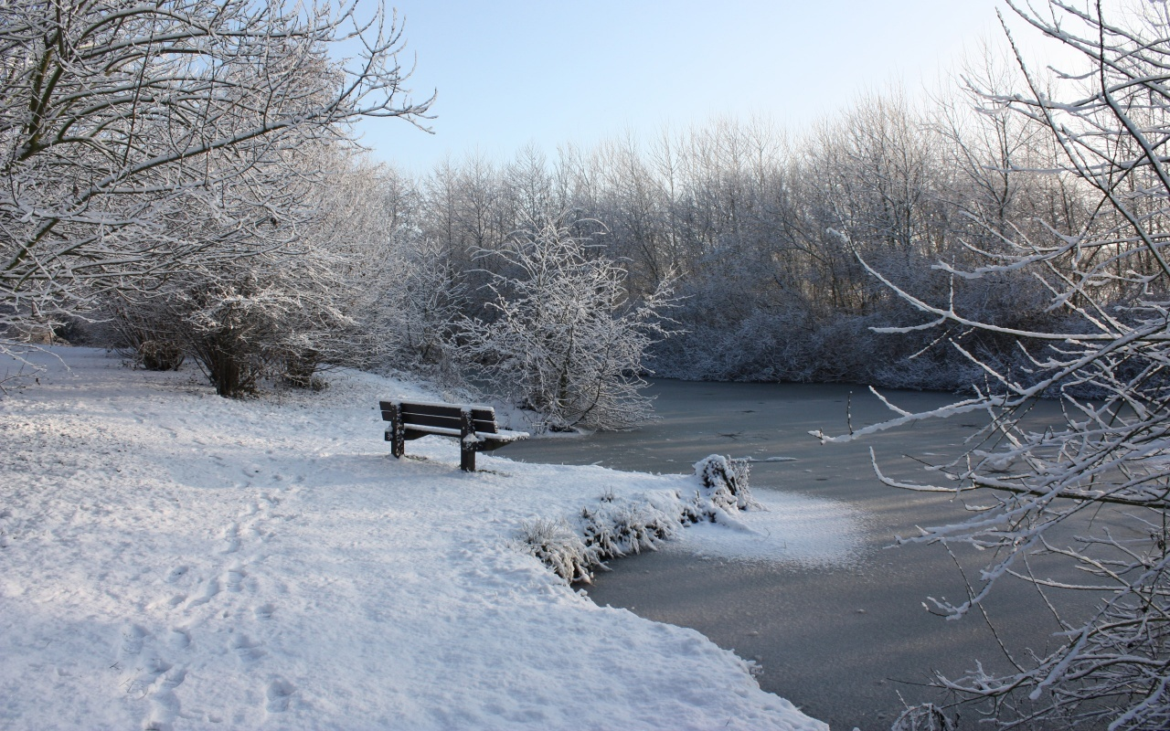 winter snow Trees bench HD Wallpaper