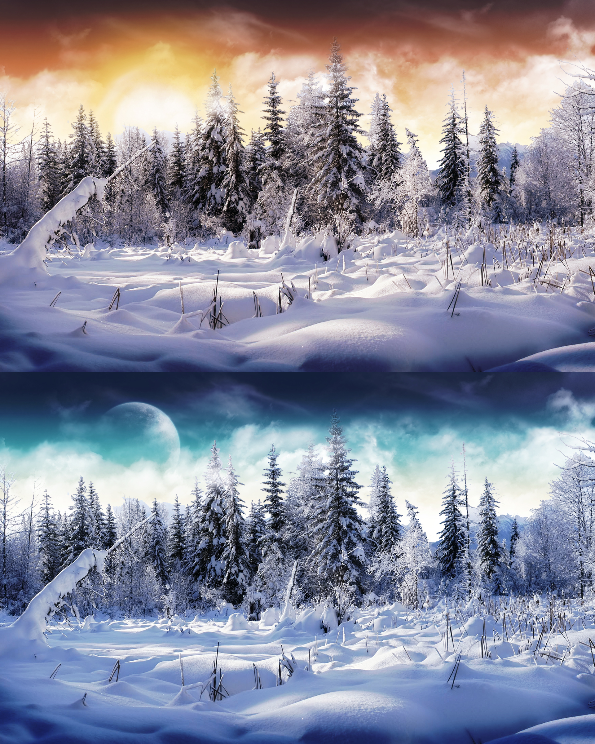 winter Wonderland by nuahs HD Wallpaper