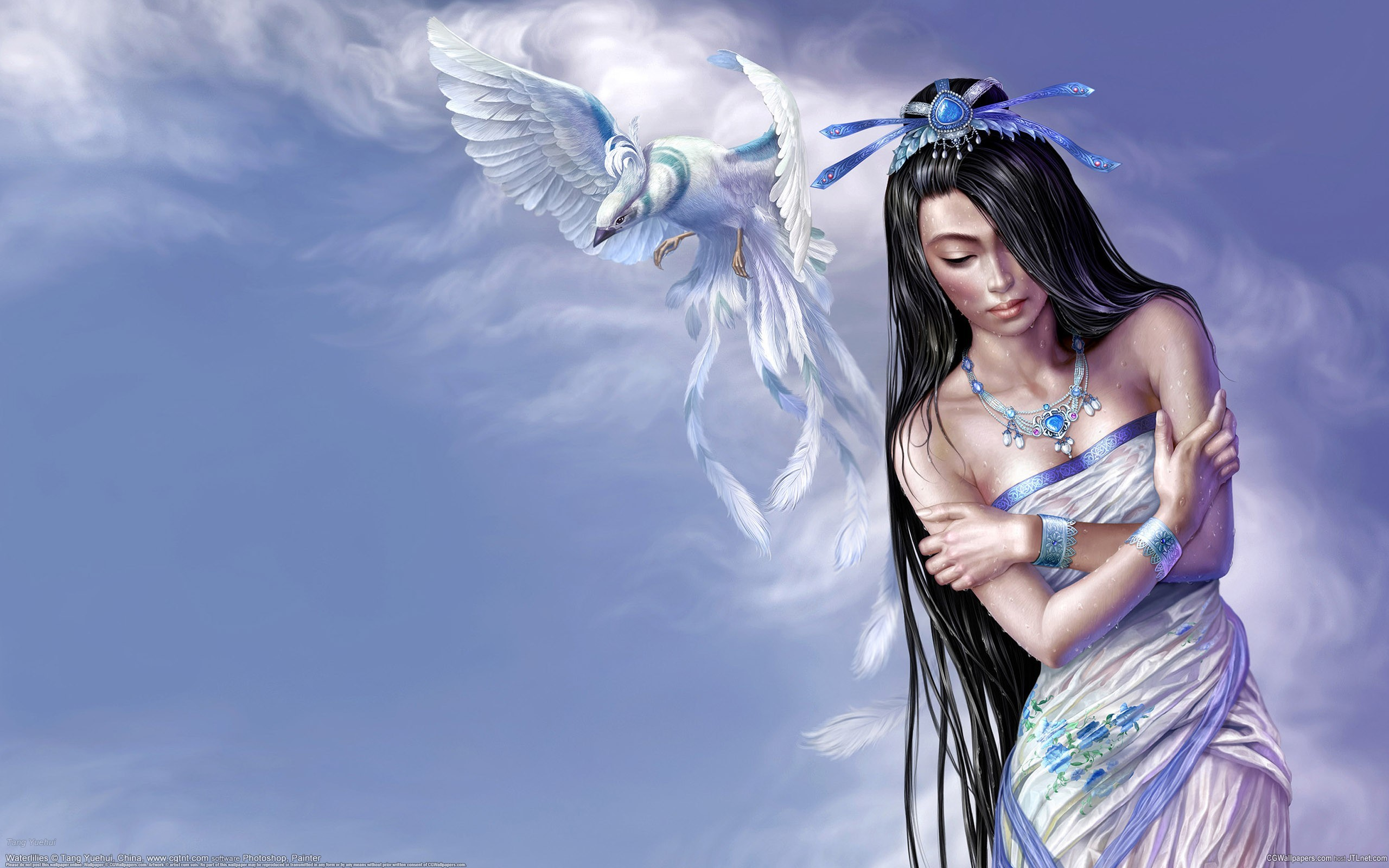 woman Birds wet artwork HD Wallpaper