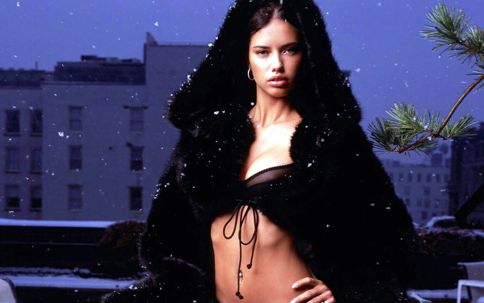 woman models adriana lima HD Wallpaper
