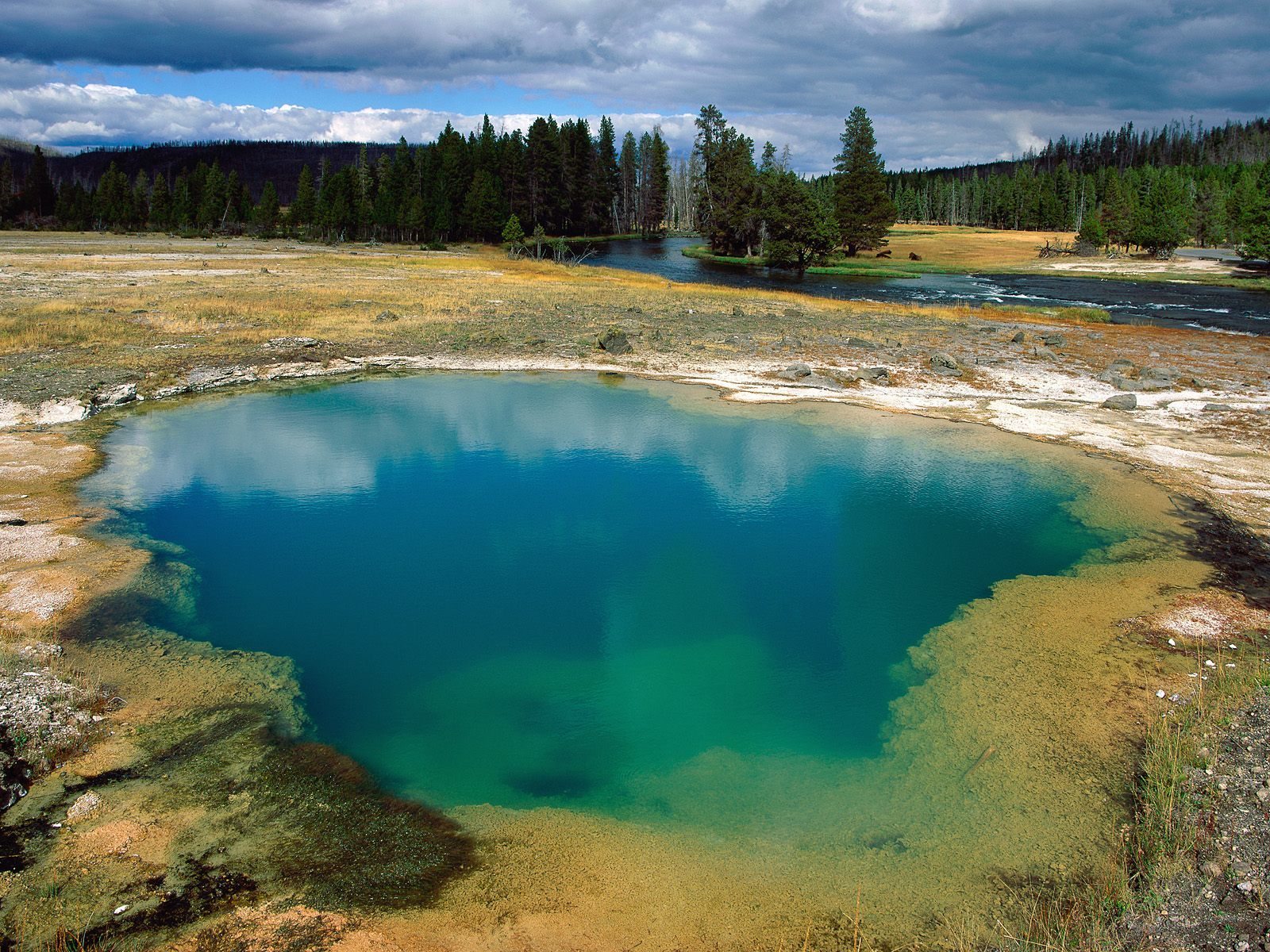 yellowstone water pools national HD Wallpaper