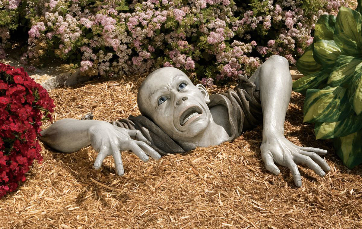 zombies funny Photomanipulation Garden HD Wallpaper